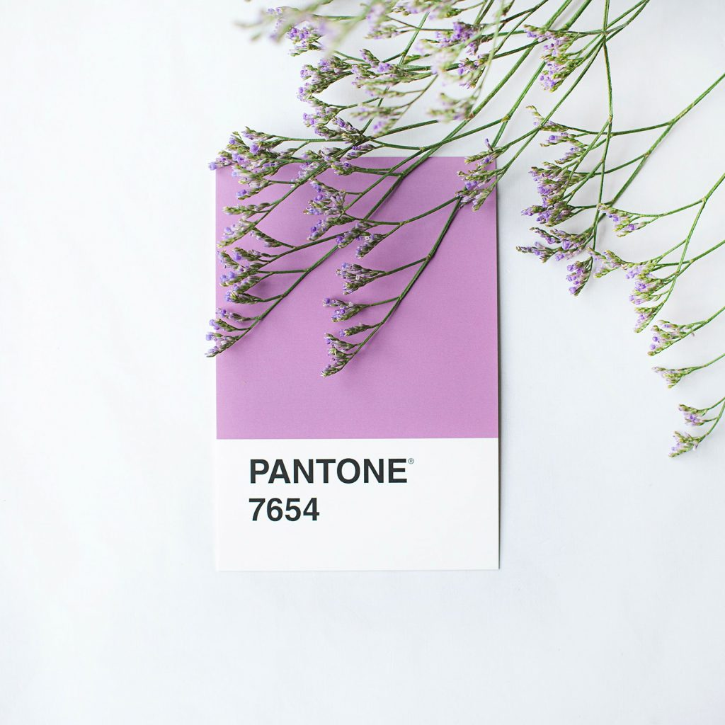 Pantone color chip